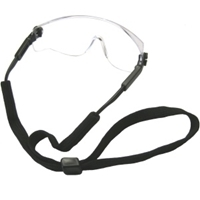 Picture of GOG2  Safety Glasses