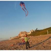 Picture of K1468  Patriotic Easy Flyer Kite 56in tails 19ft