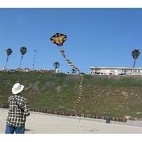 Picture of K67122  Long Snake Kite 26x40