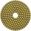 Polishing Pad – 4in Diamond Wet & Dry
