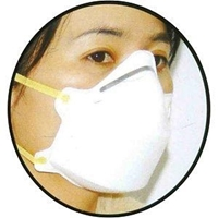 Disposable Dust Mask  3-ply N95
