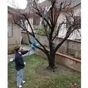 Picture of GARD13  tree trimmer 63in extends to 9ft