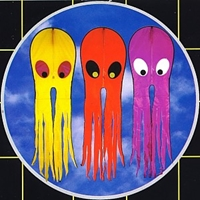 Picture of K60230G GREEN Octopus Kite 23x90-in.