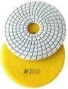 Picture of DPP2  4IN Diamond Polishing Pad WET - 100 GRIT