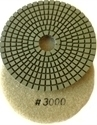 Picture of DPP7  4IN Diamond Polishing Pad WET - 3000 GRIT