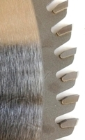 Picture of TC2096  12IN 96 Tooth Triple Chip Tungsten Carbide Tipped  Saw Blade for WOOD