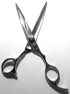 Picture of RS10 Professional Hair Cutting Scissors Length=7.75in Blade 3.5in FREE SHIPPING