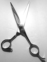 "Picture of RS9 Professional Hair Cutting Scissors apprx. lenght=7.75"" blade=3.75"" free air shipping"