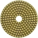 Picture for category 4in Polishing Pads